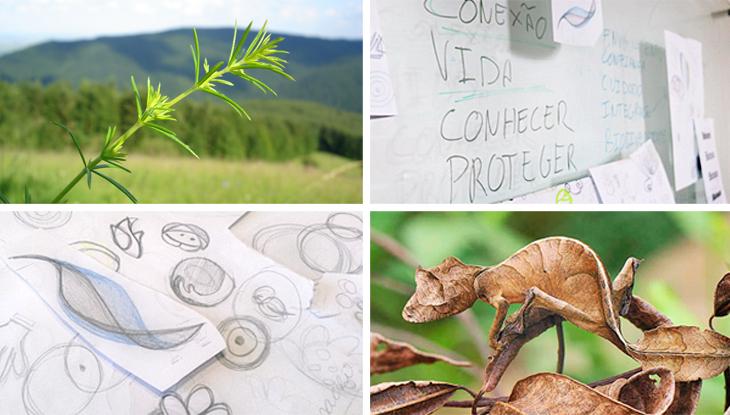 conceito criativo para identidade visual da biotours