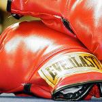 luta-boxe-empresa-